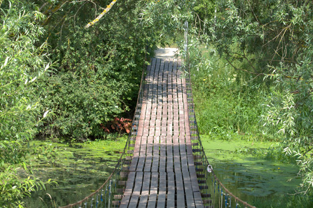 rope bridge: Rope bridge over a quiet stream, flowing near Moscow