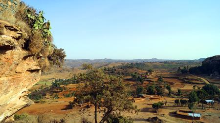 Ethiopia, stone field, tree, rocks, stones, poor country, Africa