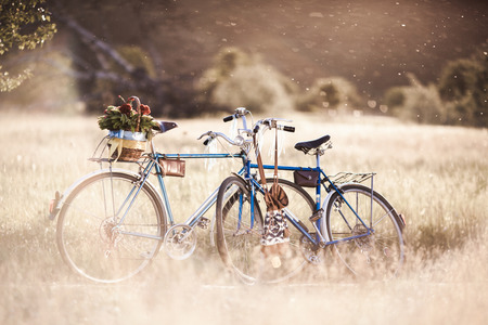 自転車と夕暮れ時の花の美しい風景の画像 写真素材