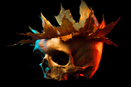 living skull: Sketch tattoo. To create tattoos.A human skull with a crown of leaves tattoo on a black background.Halloween background