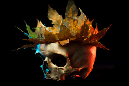 inanimate: Sketch tattoo. To create tattoos.A human skull with a crown of leaves tattoo on a black background.Halloween background
