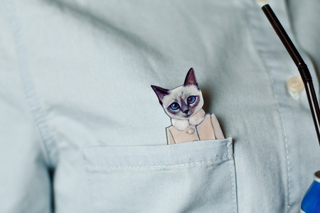 breast pocket: original thematic decoration shirt: silhouette of cat with sticking out his pocket