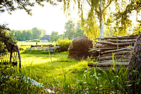 A haystack lies on the beautiful green lawn with birch trees and wicker fence Stock Photo