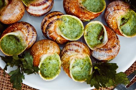 エスカルゴ ブルゴーニュ - カタツムリ香草バター、パセリと白い大皿にパン伝統的なフランス語でグルメ料理