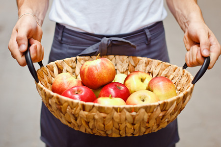 Ripe garden apples in a basket in female hands closeup. Selective focus, Stock Photo