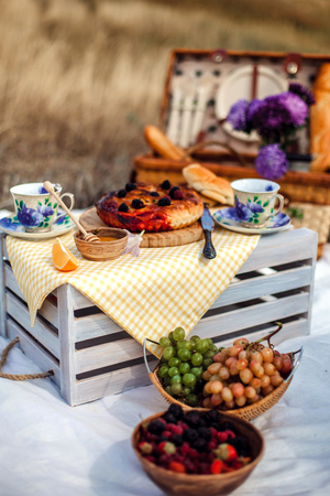 피크닉 과일, 치즈, 토스트, 꿀, 침대보에 위커 바구니와 와인 세트. 음식과 자연과 함께 아름 다운 여름 배경