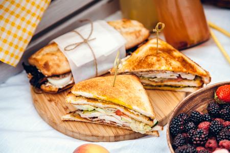 Conjunto de picnic con frutas, queso, tostadas, miel, vino con una canasta de mimbre en colcha. Fondo de verano hermoso con comida y bebida en la naturaleza Foto de archivo - 89663664