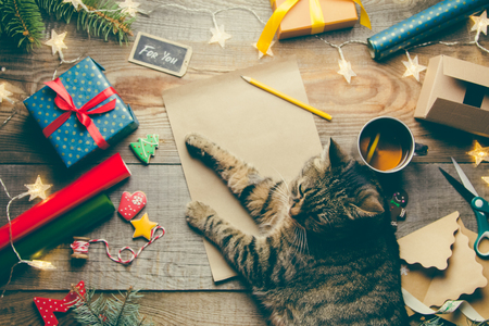 Beautiful Christmas background with a new year décor, a sheet of old paper, garland and gifts, cup of tea and cat lies on a wooden background. Merry Christmas postcard. Archivio Fotografico