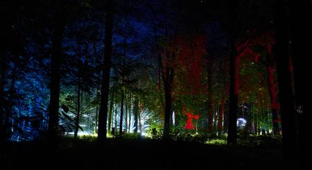 Night lights show