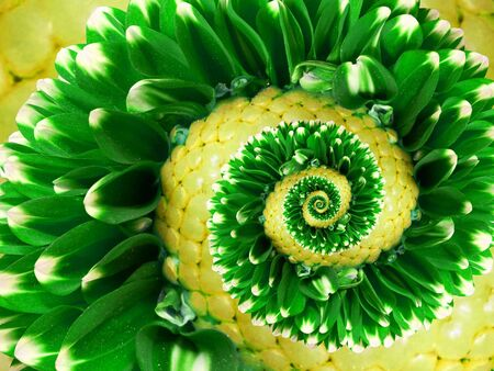 Yellow green flower spiral abstract flower pattern Floral twirl abstract pattern fractal