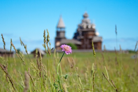 clover on the background of the church photo