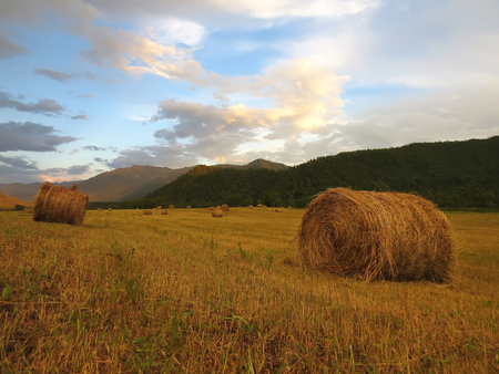 rolls of hay among the mountains Stock Photo