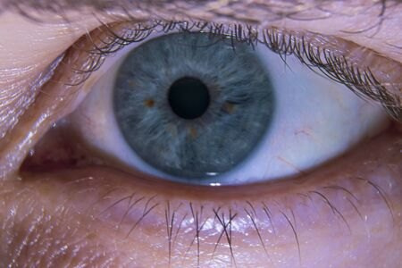 The human eye is close-up. Paired sensory organ of a person. Standard-Bild