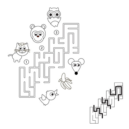 choose a path: Find hidden right way. Task and answer. Game for children. Search and choose correct path.