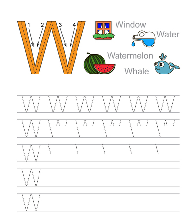 tracing: Vector exercise illustrated alphabet. Learn handwriting. Tracing worksheet for letter W.