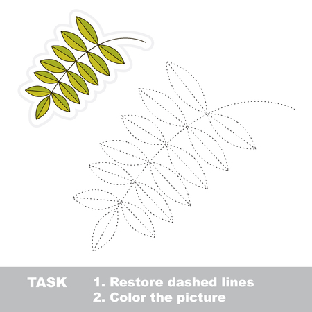 restore: Vector ash leaf to be traced. Restore dashed line and color the picture. Illustration