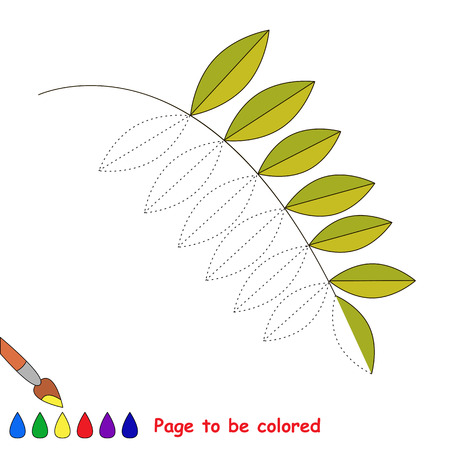 be green: Green ash leaf vector cartoon to be colored. Coloring book for children.