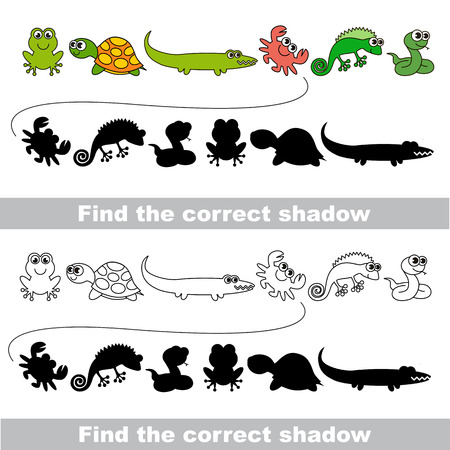 amphibious: Amphibious set with shadows to find the correct one. Compare and connect objects. and their true shadows.