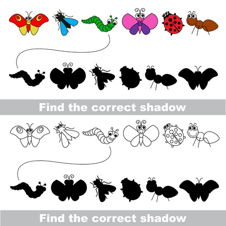 bird shadow: Insects set with shadows to find the correct one. Compare and connect objects. and their true shadows. Illustration