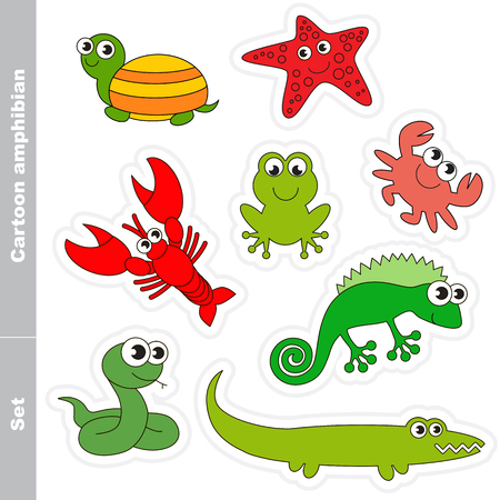 anuran: Amphibian colorful set  in vector. Under water animals and amphibians.