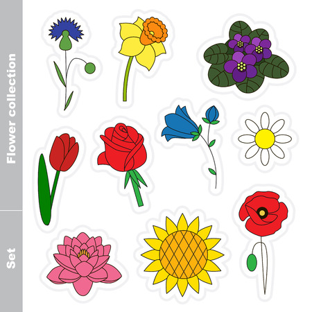 bluet: Flower set colorful in vector. Different flowers for your design. Illustration