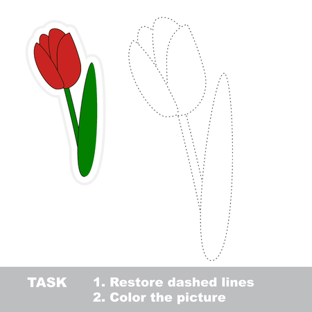 dashed: Tulip in vector to be traced. Restore dashed line and color the picture.