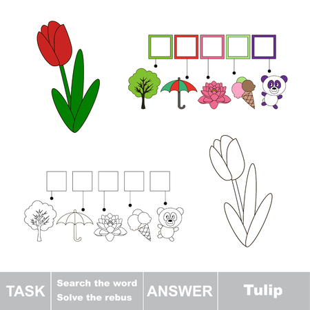 Vector rebus game. Task and answer. Solve the rebus and find the word Tulip