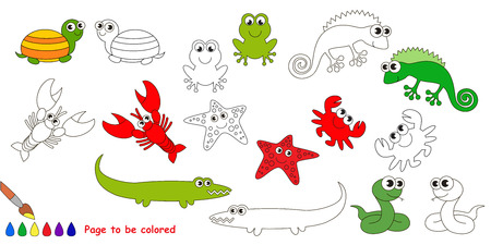 amphibians: Amphibian colorful set  in vector. Under water animals and amphibians.