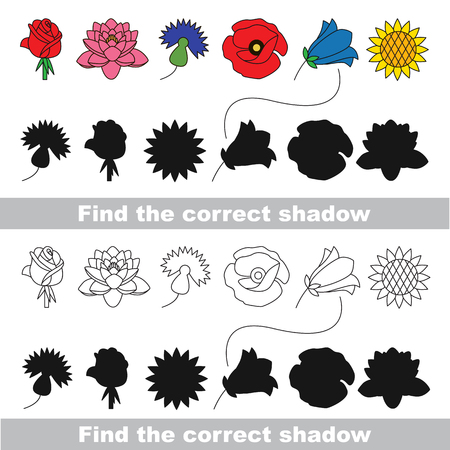 corn poppy: Flower set with shadows to find the correct one. Compare and connect objects. and their true shadows. Illustration