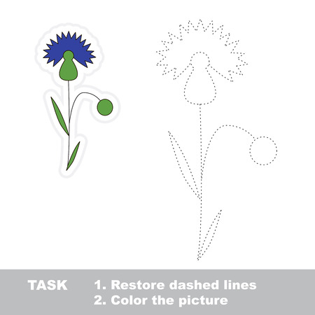 cornflower: Cornflower in vector to be traced. Restore dashed line and color the picture.