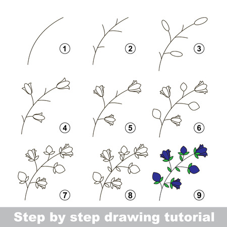 bluebell: Step by step drawing tutorial. Vector kid game. How to draw a Bluebell