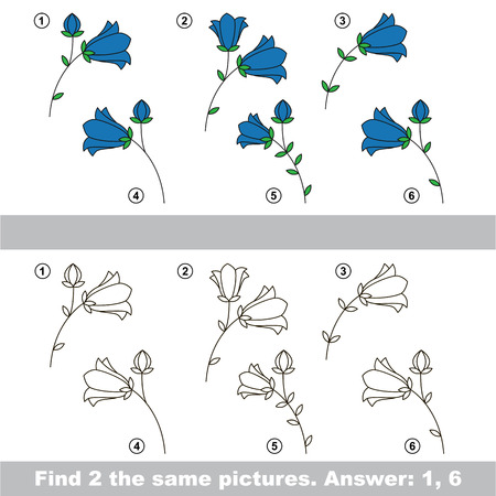 similar: The design difference.  Vector visual game. Task and answer. Find two similar Bluebells Illustration