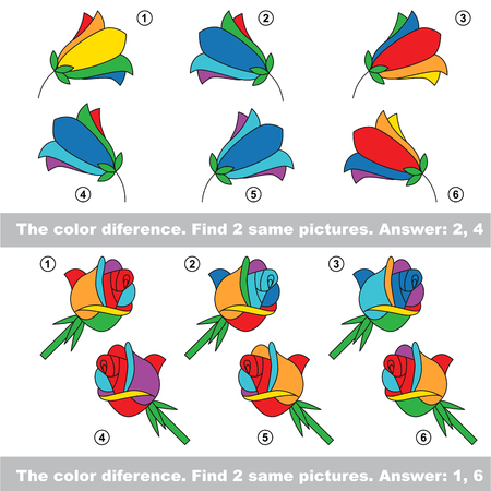 similar: The color difference. Visual vector game. Task and answer. Find two similar Bluebells and Roses Illustration