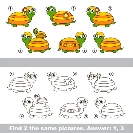 similar: The design difference.  Vector visual game. Task and answer. Find two similar Turtles