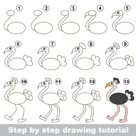 tutorial: Drawing tutorial for children. How to draw the funny Ostrich