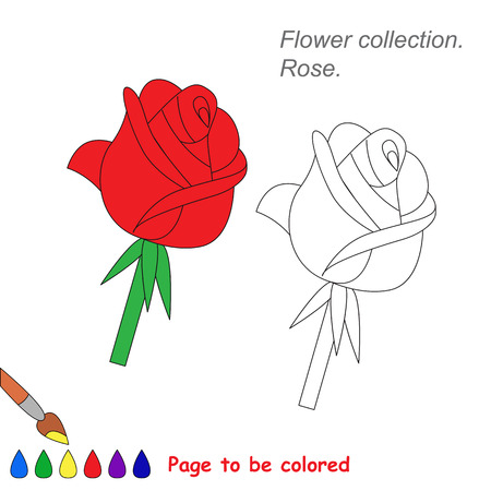 rose isolated: Rose in vector cartoon to be colored. Coloring book for children.
