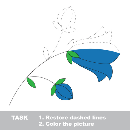 campanula: Campanula in vector colorful to be traced. Restore dashed line and color the picture. Worksheet to be colored.