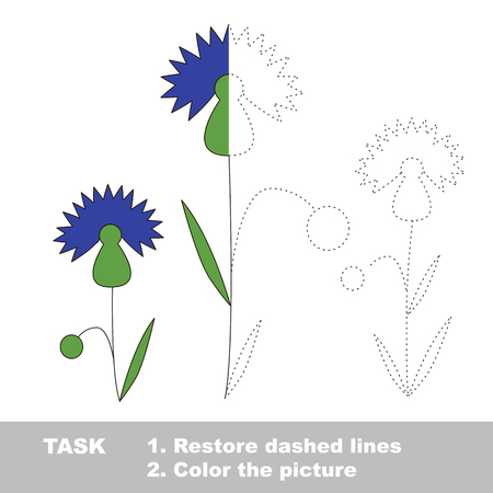 cornflower: Cornflower in vector colorful to be traced. Restore dashed line and color the picture. Worksheet to be colored.
