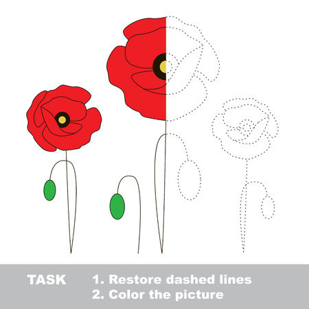 dashed line: Poppy in vector colorful to be traced. Restore dashed line and color the picture. Worksheet to be colored. Illustration