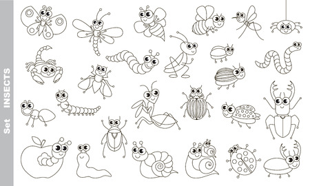 colorless: Insect set in vector, the colorless version. Illustration