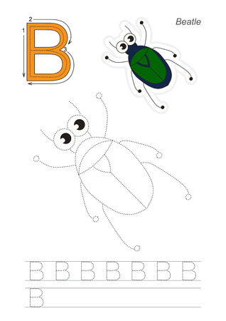 Vector exercise illustrated alphabet. Learn handwriting. Gaming and education. Page to be traced. Kid game. Complete english alphabet. Tracing worksheet for letter B, beetle