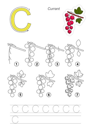 red currant: Complete vector illustrated alphabet with kid games. Learn handwriting. Easy educational kid game. Simple level of difficulty. Gaming and education. Drawing tutorial for letter C. The Red Currant.