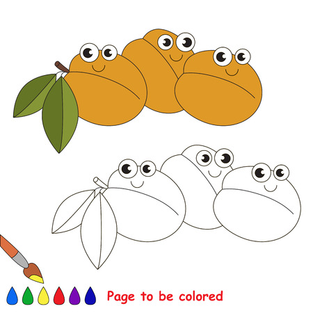 primary education: Apricots to be colored. Coloring book to educate kids. Learn colors. Visual educational game. Easy kid gaming and primary education. Simple level of difficulty. Coloring pages. Illustration