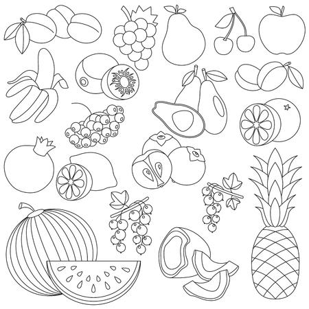 banana sheet: Big fruit set in vector, the colorless version.