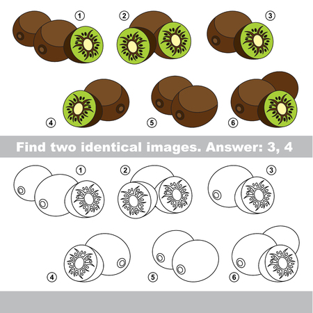 similar: The design difference. Vector visual game for kid education. Simple level of difficulty. Easy educational game. Task and answer. Find two similar Kiwifruits. Illustration
