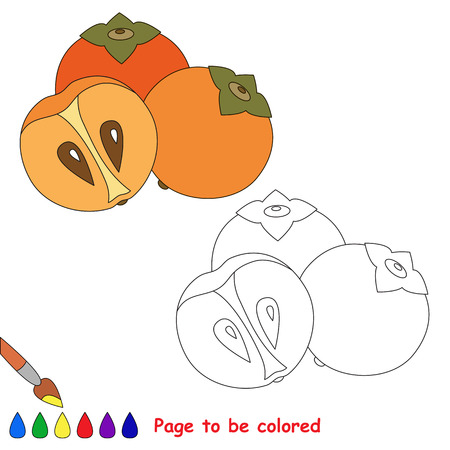 Sweet persimmon to be colored. Coloring book to educate kids. Learn colors. Visual educational game. Easy kid gaming and primary education. Simple level of difficulty. Coloring pages.