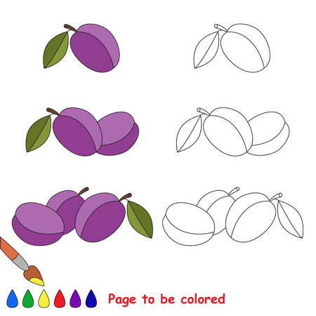 primary education: Sweet plums to be colored. Coloring book to educate kids. Learn colors. Visual educational game. Easy kid gaming and primary education. Simple level of difficulty. Coloring pages.