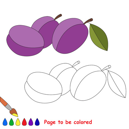 difficulty: Violet plum to be colored. Coloring book for children. Visual educational game. Easy kid gaming. Simple level of difficulty. Illustration