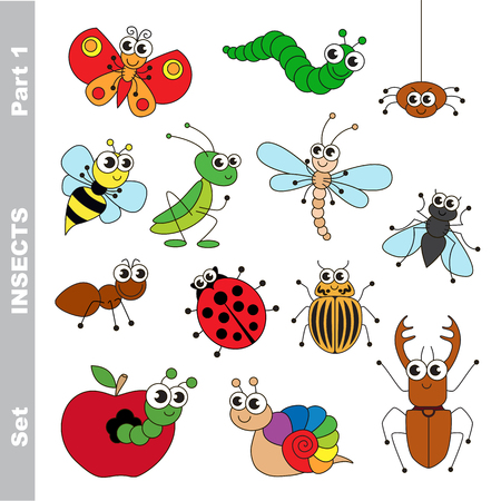 Small insects set in vector, the colorful version.