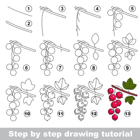 red currant: Drawing tutorial for children. Easy educational kid game. Simple level of difficulty. Kid education and gaming. Indoor games for children. How to draw Red currant. Illustration